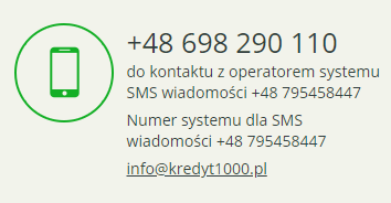 Kredyt1000.pl